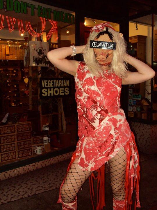 Screen Printed Lady Gaga Meat Dress!
